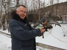 Директор «Роева ручья» Андрей Горбань прокомментировал покупку катера