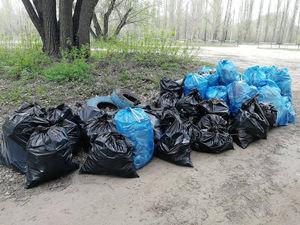 «Утром выхожу — мешки»: мэр Челябинска отчитал главу района за мусор возле своего дома