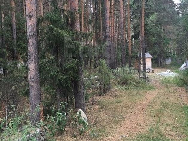 Взлет цен на землю под Екатеринбургом. Топ самых дорогих участков