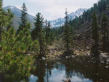 Национальный парк в Красноярском крае вошел в десятку лучших в стране