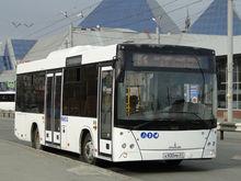 Налоговики хотят обанкротить челябинские автобусы