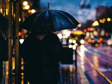 Дождливую и холодную погоду обещают синоптики в День города