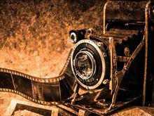 Гости «Пикника ДК» первыми увидят новый фотопроект «Параллели»