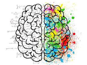 Мозг с годами работает не хуже. Правило 10 000 часов — миф. Что происходит у нас в голове?