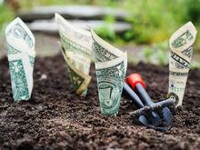 Единственный путь к богатству: забудьте об экономике и трендах, думайте о своих «хочу»