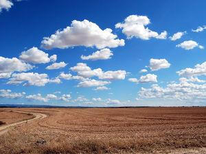Цены на земельные участки в Красноярском крае заметно выросли в цене