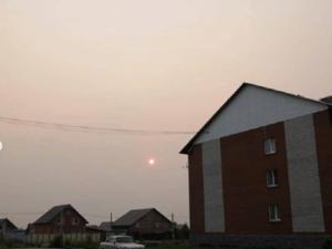 Пожары усугубляют наводнения: почему власть не может и не хочет справиться с катаклизмами