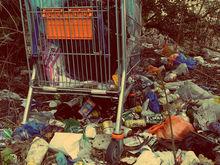 Облправительство наладит отношения между участниками «мусорной» реформы