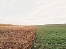 Продают за бесценок. В Нижегородской области темпы падения цен на землю самые высокие в РФ
