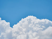 За период смога в Новосибирске в полтора раза вырос спрос на очистители воздуха