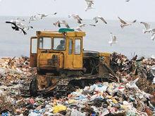 В Красноярском крае готовят новую мусорную реформу