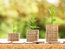 «Вывести из тени». Правительство региона придумало, как стимулировать рост малого бизнеса