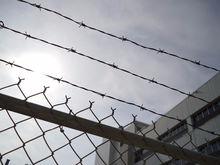 Свыше сотни жертв, добыча — десятки миллионов. «Уральские мавроди» получили 7,5 лет тюрьмы