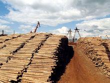 Красноярский леспром нарастил производство на 25%