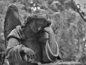 В Челябинске проверят «Службу городских кладбищ». Котова: «У нас нет секретов»