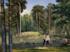 Смотровая башня и лабиринт для детей. Парк на Уралмаше реконструируют за 520 млн руб.