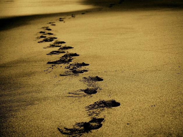 10 тыс. шагов в день — рекламный трюк, в который верят уже полвека? Сколько же нам ходить