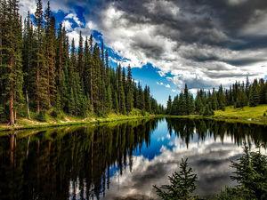 За состоянием лесов Красноярского края будет следить система раннего видеомониторинга