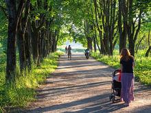 Красноярцы выберут общественные пространства для благоустройства в 2020-2021 годах