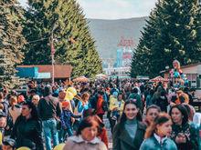 Мэрия Красноярска проиграла Центральному парку дело о сгоревших павильонах