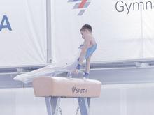Заксобрание: Новосибирск станет столицей спортивной гимнастики