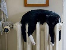 В Нижнем Новгороде с 23 сентября тепло начнет поступать в жилые дома
