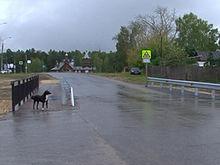 Тротуар для жителей поселка Березовая пойма появился после обращения к Владимиру Панову
