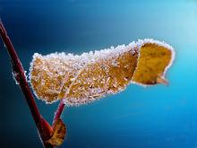 В классах — не больше +13 градусов. Екатеринбургская гимназия закрылась из-за холодов