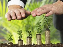 Для экоинвесторов упростят предоставление земельных участков