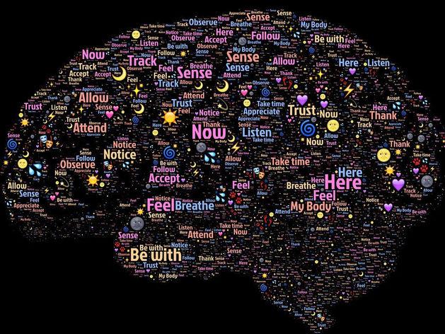 Таблетки помогут улучшить работу мозга? Ничего подобного, серым клеточкам нужно другое