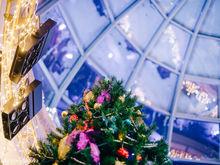 Новогодняя ночь-2020 в гранд-отеле «ВИДГОФ»: праздник на счастье!