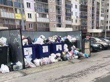 Сообщить о переполненном мусорном баке во дворе теперь можно через смартфон