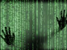 День Интернета: красноярские бизнесмены и руководители о своих первых шагах в Сети
