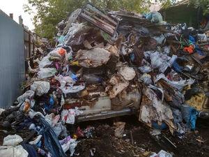 «Нам задолжали 70 млн руб.!» «Спецавтобаза» оценила расходы на уборку нелегальных свалок