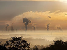 В Красноярске экологи приостановили работу лесоперерабатывающего предприятия