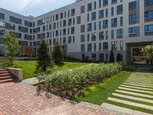 Новые городские кварталы с собственным лесопарком появятся в Заельцовском районе