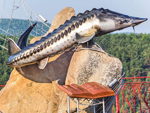 Автор красноярского памятника «Царь-рыба» отсудил 100 тыс.руб. за нарушение авторских прав