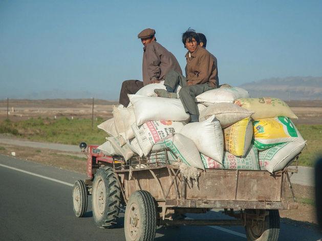 «Китаец умрет, но сделает работу». Как фермеры из КНР занялись бизнесом на Дальнем Востоке