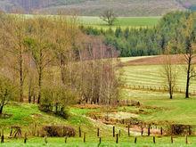 «Люди предоставлены сами себе». В Ростовской области пять фермеров погибли в перестрелке