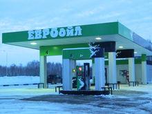 Сеть АЗС продают в курортном районе Новосибирской области