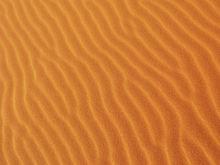 «Сибгидропроект» столкнулся с трудностями при доставке песка для ЛДС