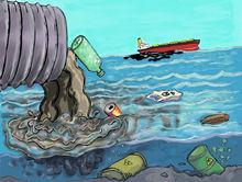Greenpeace выяснил, чем загрязняют берега водоемов в Новосибирске