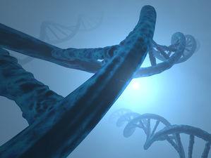 «Наличие мутации — это не приговор». Как работают наши гены?
