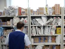 «Надо сократить время доставки». AliExpress запустил прямые рейсы из Китая в Екатеринбург