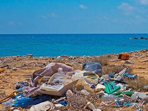 «Гринпис» призвал Минприроды запретить одноразовый пластик и влажные салфетки