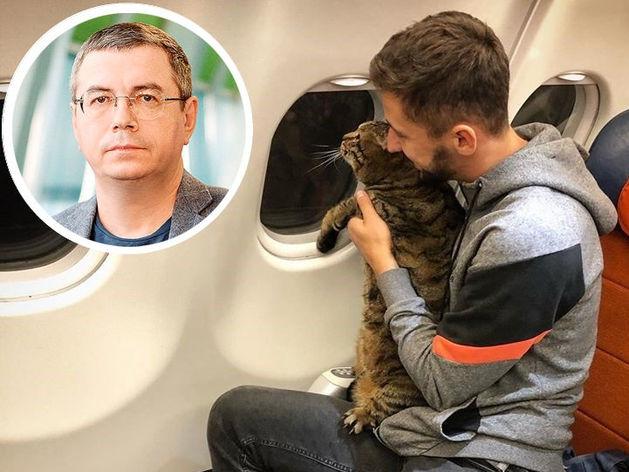 «Котиков любят все. Аэрофлот не любит никто». Почему всех возбудила история Я/ТЫТолстыйкот