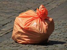 Новосибирский регоператор презентовал сервис по контролю за мусором