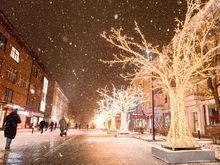 Улицу Сурикова в Красноярске превратят в трехмерный арт-объект