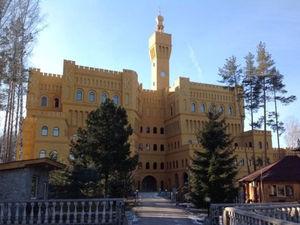 Скидка 135 млн руб. Под Екатеринбургом четвертый год пытаются продать итальянский замок