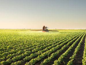 Банк «Центр-инвест» выдал 700 льготных кредитов сельхозпроизводителям по госпрограмме